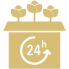 4h delivery icon