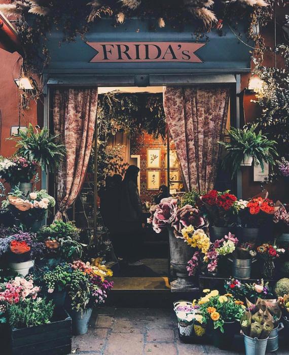 Negozio Frida's di Bologna