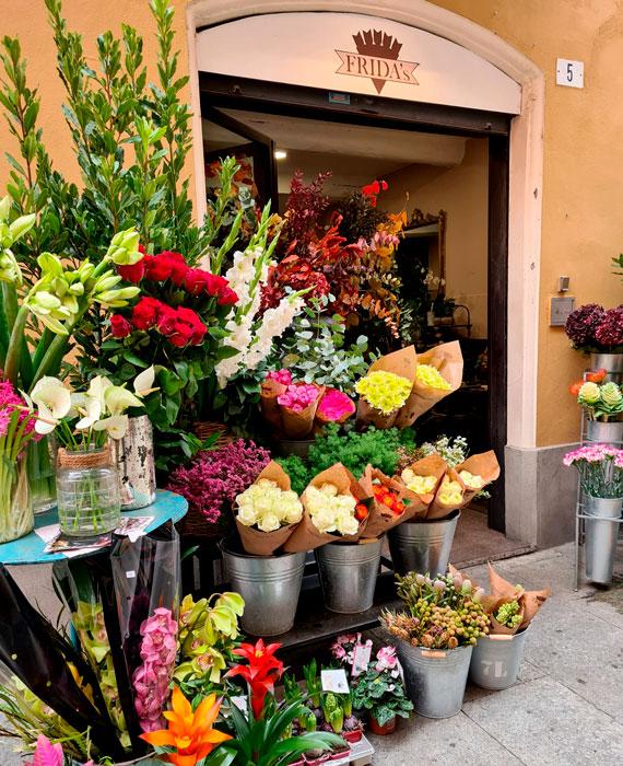 Frida's Store Modena