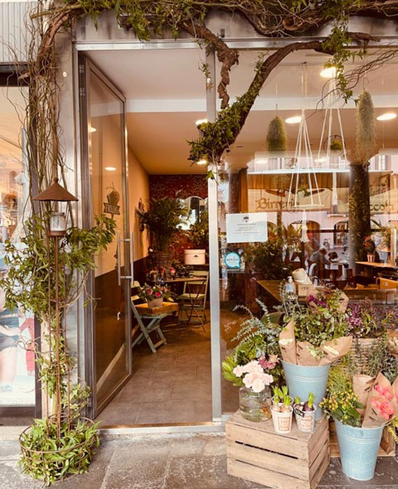 Frida's Store Rovigo