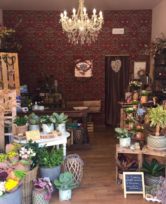 Frida's Store Venezia-Mestre