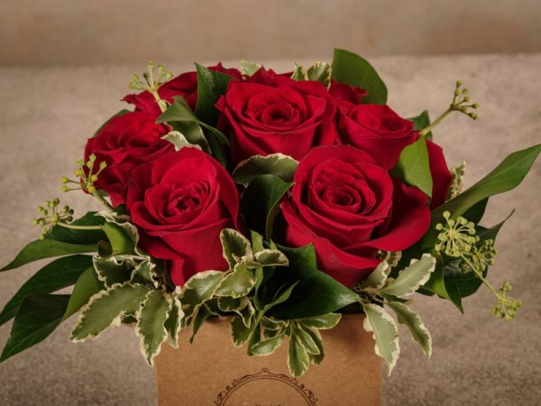 Red Roses Box, flowers in a small cardboard box, home delivery across Italy