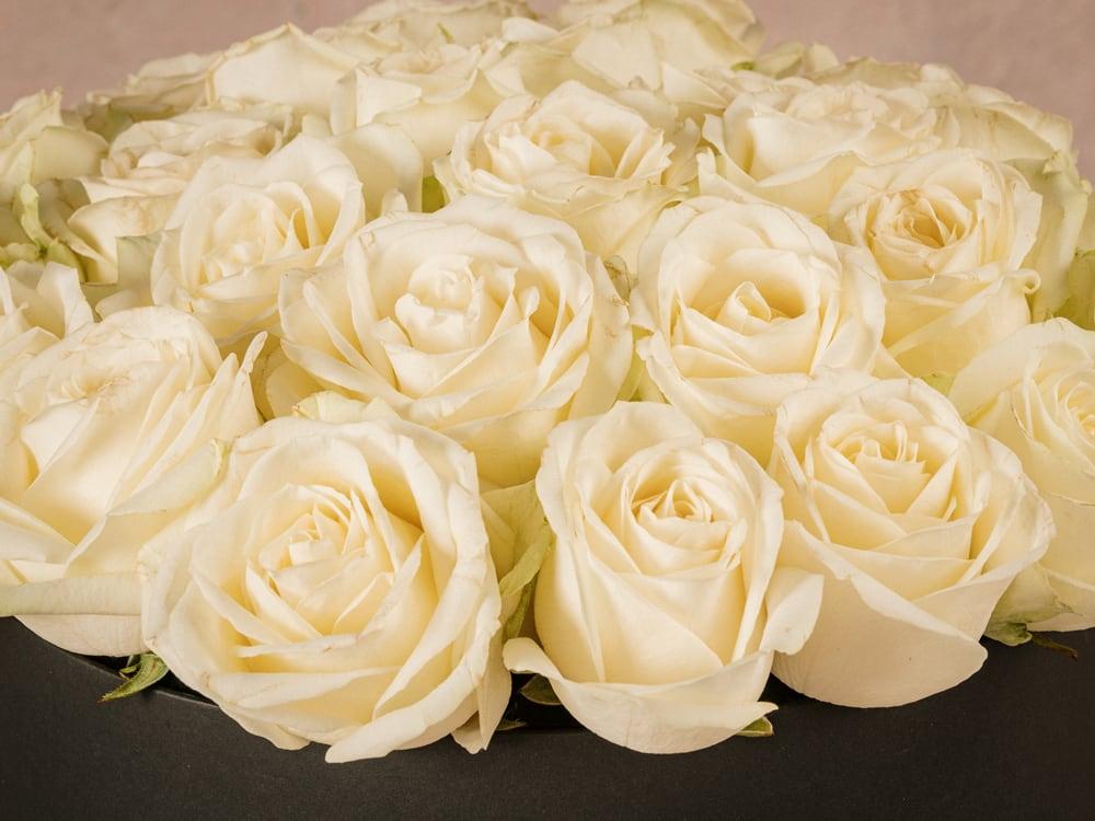 Cappelliera grande Rose Bianche, scatola fatta a mano con marchio Frida's.