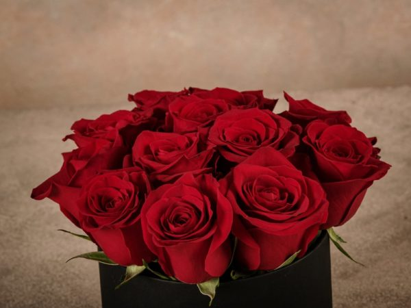 Medium Red Rose Hatbox, high quality roses home delivery