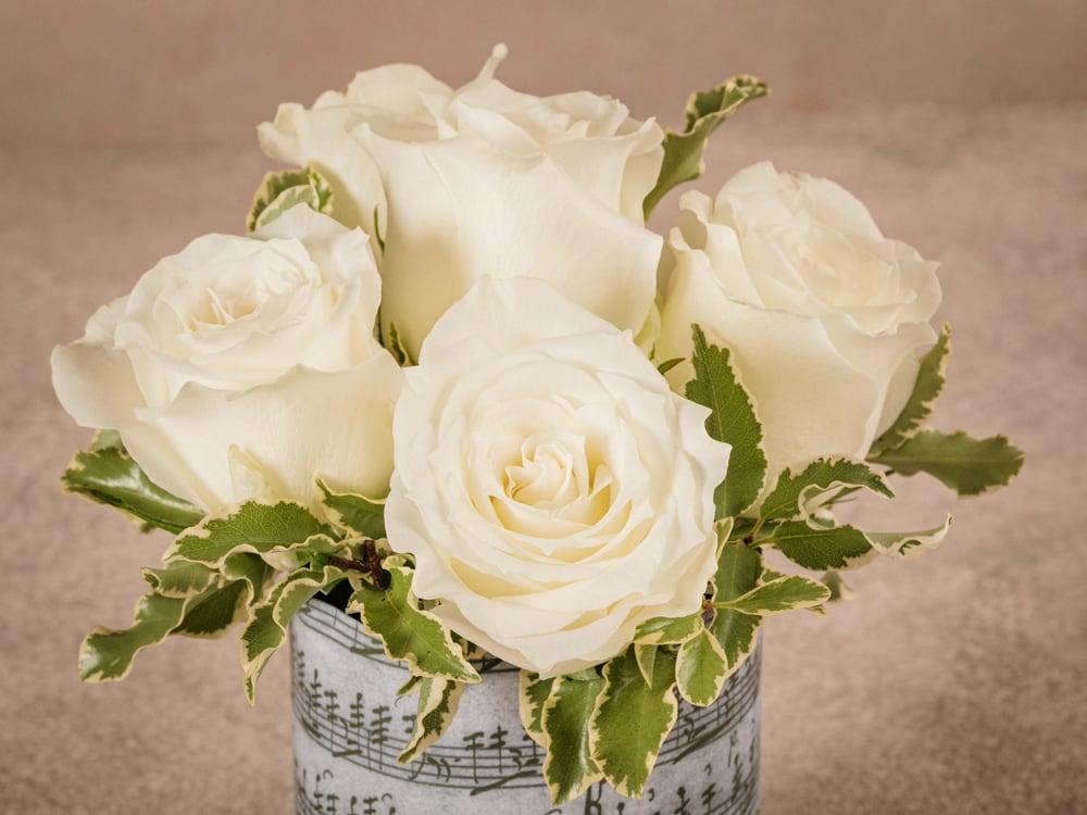 Sushi Rose Bianche, storica creazione Frida's. Rose bianche di alta qualità in sushi