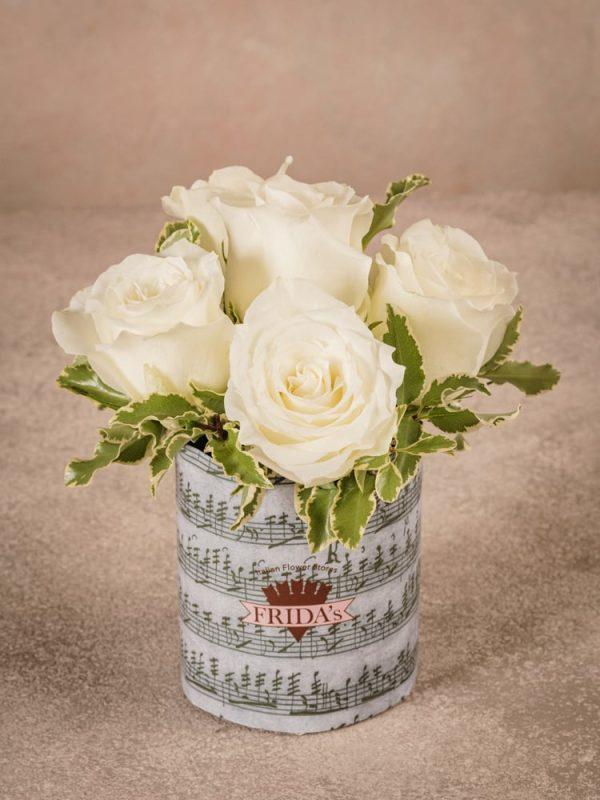 Sushi Rose Bianche, best seller Frida's rose bianche di alta qualità