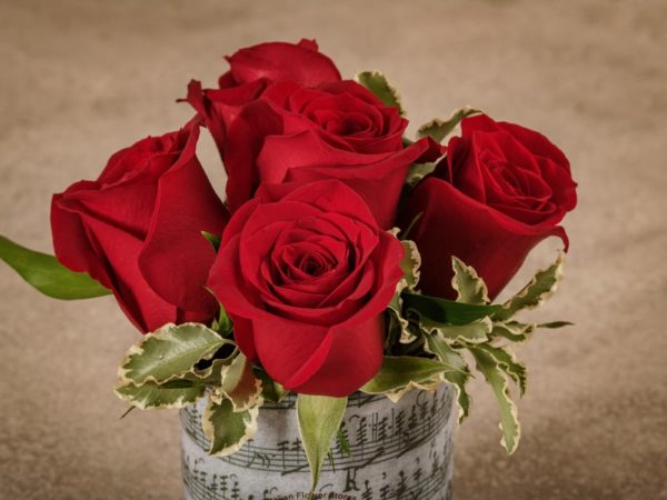 Red Rose Sushi Frida's bestseller, high quality red roses home delivery across Italy