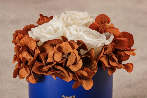 Cappelliera Mini Blu, Rose e ortensie stabilizzate. Fiori Frida's con consegna a domicilio