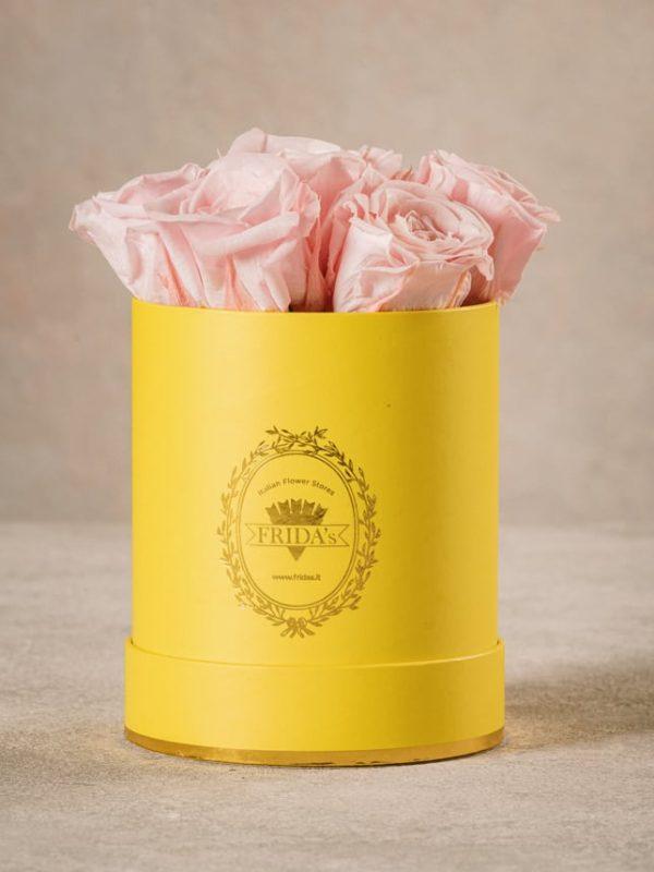 Cappelliera Mini Gialla, Rose stabilizzate che durano nel tempo. Rose di alta qualità Frida's