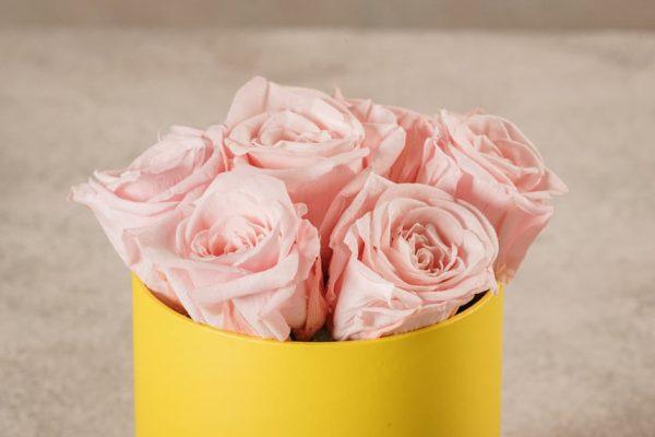 Cappelliera Mini Gialla, Rose stabilizzate di altissima qualità