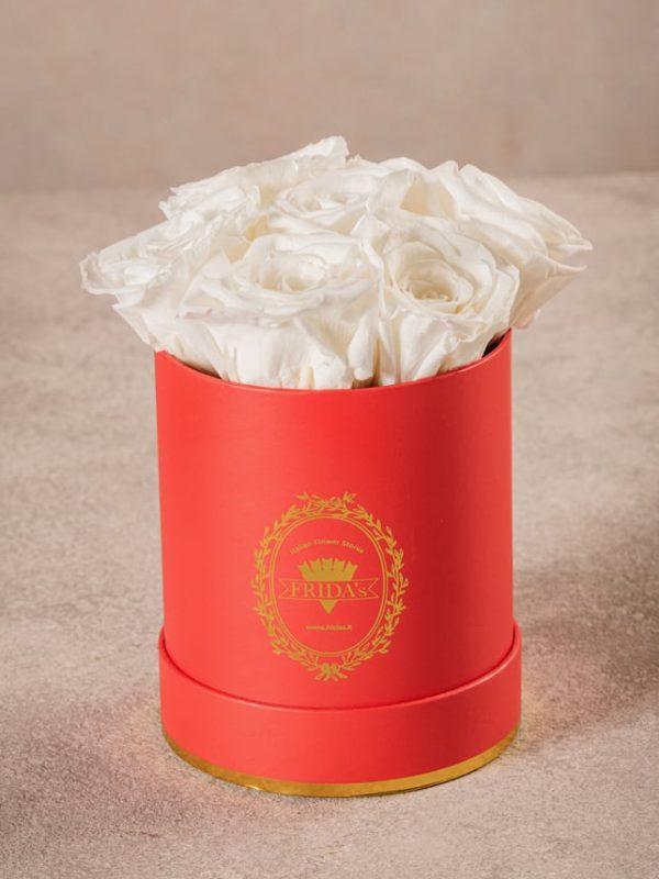 Cappelliera Mini Rossa, Rose stabilizzate che durano nel tempo. Rose di alta qualità Frida's