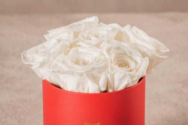 Cappelliera Mini Rossa, Rose stabilizzate di altissima qualità