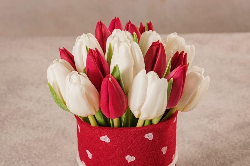 Sushi Tulipani Bianchi e Rossi, il regalo perfetto per chi ama i tulipani.