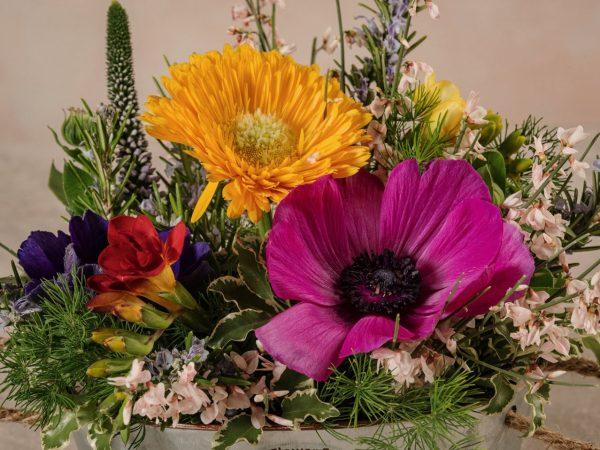 Cestino Di Latta, fiori e verdi di stagione