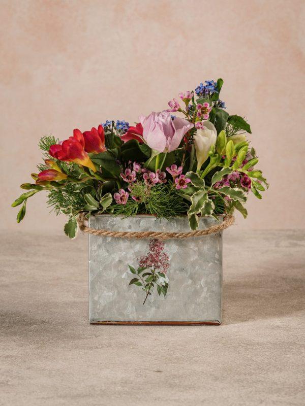 Cubo Di Latta, fiori e verdi di stagione by Frida's