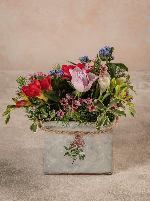 Cubo Di Latta, fiori e verdi di stagione di alta qualità direttamente a casa tua
