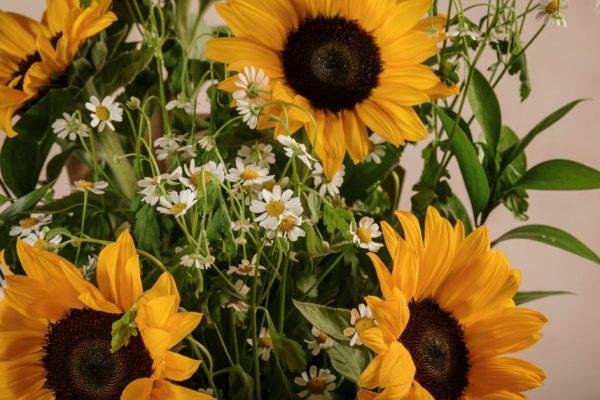 Flower Basket Girasoli, fiori freschi online consegna a domicilio in tutta Italia