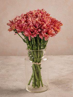 Bouquet Margherite, bouquet di margherite fresche Frida's. Scegli il colore e la quantità