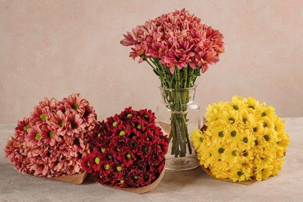 Bouquet Margherite, scegli il colore del tuo bouquet: salmone, giallo, rosso ciliegia