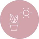 Posizione ottima per piante Frida's